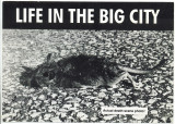 Life In The Big City Actual Death Scene Photo