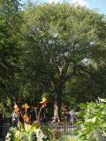 Hare Krishna Tree N.Y.