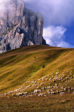 Postcards From The  Dolomites ( Italian Alps )
