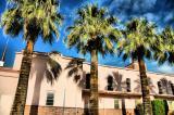 Church Palms