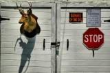 Deer Head Garage (Closer)