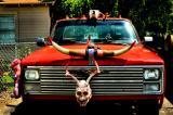 Deer Head owner's truck