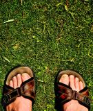 April 29- The Traveling Sandals