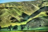 Ft. Tejon hills