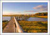 Aberlady Bay Nature Reserve