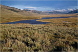 West end of the (Lamar Valley)