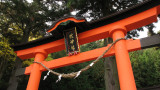 Vermilion torii at the entrance to Shizume-jinja