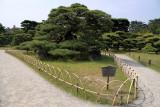 Tsurukame-matsu