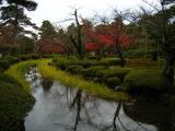 Reedy stream near the Flower-viewing Bridge