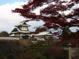 Autumn foliage near Ishikawa-mon