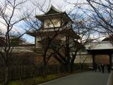 Bare trees beside Ishikawa-mon