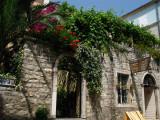 Overgrown shop facade, Stari Grad