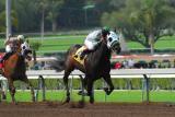 Santa Anita Park Race Track at CA.