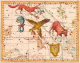 Tafel X - Der Adler; Antinous; der Delphin ....