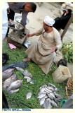 Fresh Fish Seller