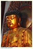 Jade Buddha Temple - III