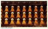 China2009-50D-0939 Custom.JPG