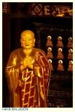China2009-50D-0940 Custom.JPG