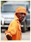 Curious in Orange