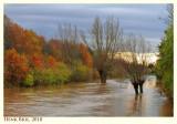 Autumn near the Vloedgraaf - high water