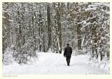 Snow Stroller - Kuieren door de sneeuw