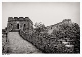 Up the Great Wall