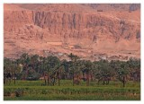 Temple of Hatshepsut from a distance