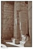 Ramesseum 7