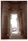 Ramesseum 8