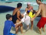 Playa-del-Carmen-733.jpg