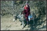Brothers on donkey