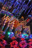 Les marchés de Noël à Metz et Strasbourg Decembre 2010
