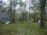 Hurricane Ike September 13, 2008