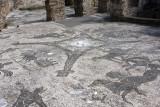 Ostia Antica Bath Floor