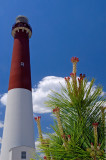 $220 - Barnegat Lighthouse, NJ, USA