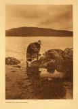 Gathering abalones - Nakoaktok