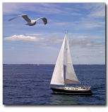 The Essence of Sailing