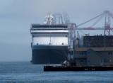 Halifax-Dartmouth Nautical