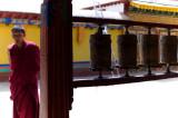 Drepung Monastery 哲蚌寺