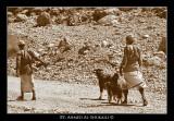 people of Wadi Arbean