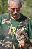 red shouldered hawk brent