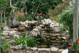 Pond and  visitors