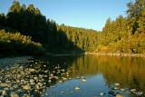 Smith River, Del Norte Co, CA