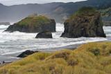 Meyers Creek Seastacks and Storm Surf