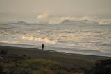 Beach walk along the morning surf