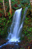 Falls, Agness Rd. Curry Co. OR