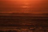 Bronze Hues on Sea