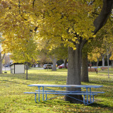Fall at Caldwell Park _DSC0381.jpg
