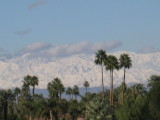 (from patio of the Rancho Mirage Library)