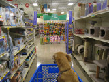 I'd love to do some cart racing down the aisles...